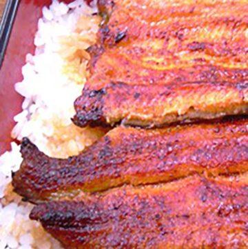glazed grilled unagi on rice
