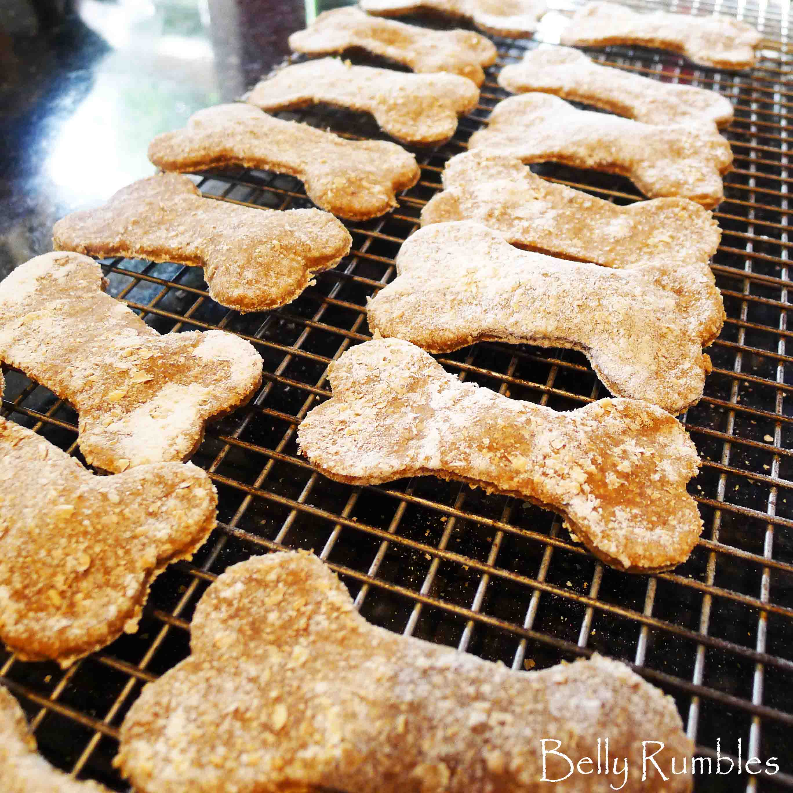 A Treat for Sally – Chicken Liver Cookies