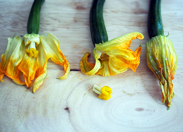 How to stuff a zucchini flower