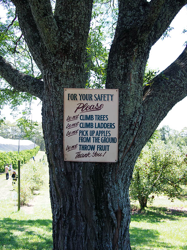 Bilpin Springs Orchard