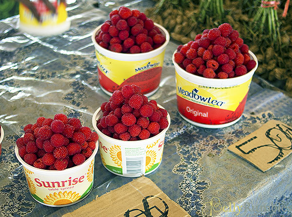 Vanuatu Raspberries