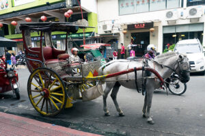 The Oldest Chinatown in the World, Binondo. Chinatown Food Tour Manila – Horse drawn carriages of Chinatown Manila.