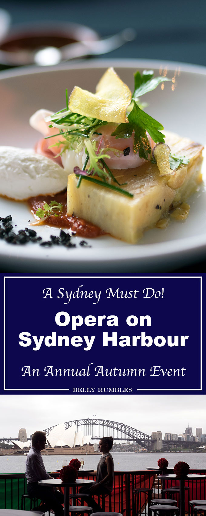 Handa Opera on Sydney Harbour 2017 production of Carmen and an insight to what The Platinum Club is really like for dinner.