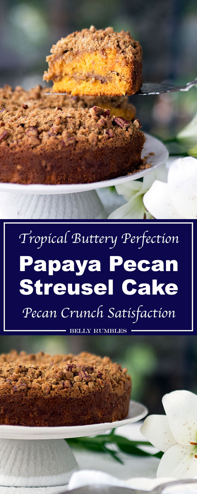 Papaya Pecan Streusel Cake Recipe, and moist, with a crunchy pecan streusel topping. Plus a gorgeous orange hue from Australian red papaya.
