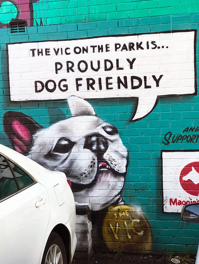 The Vic on The Park Dog Friendly Restaurant