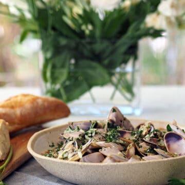 Easy pipis recipe with white wine garlic and cream