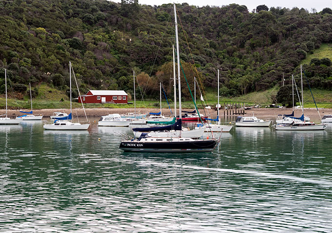 Sailing at Waiheke Island near Auckland