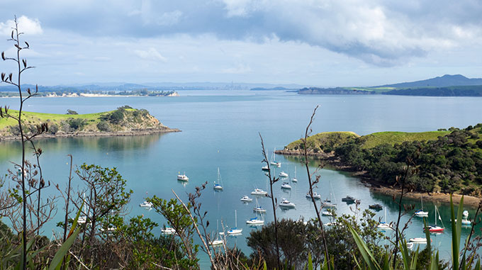 The beautiful waters of Waiheke Island New Zealand