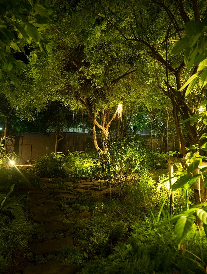 The lush gardens of Suhring Restaurant Bangkok Thailand