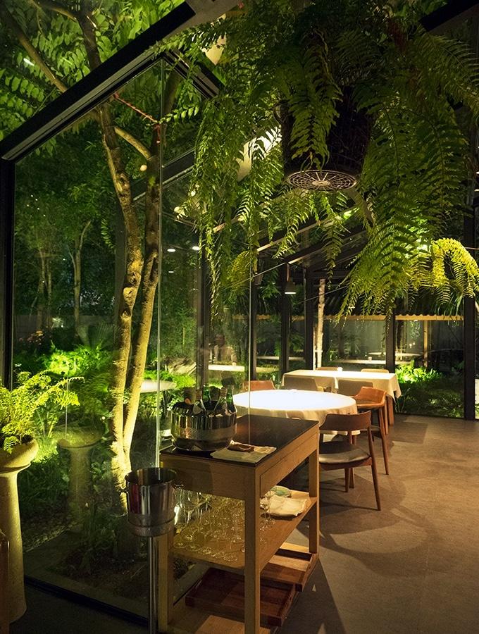 Suhring Restaurant Bangkok Thailand Winter Garden Dining Room