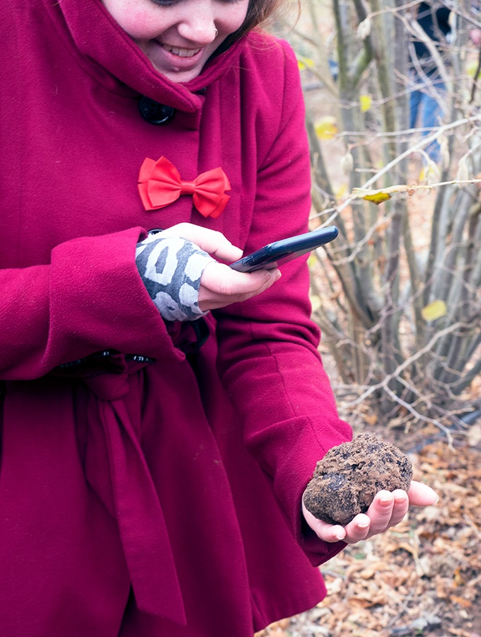 black truffles get their time in the social media spotlight.