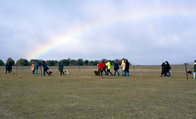 Truffle hunting at Tarago Truffles. The rainbow is pointing the direction.
