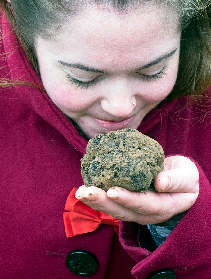 finding truffles as big as your head, Truffle hunting at Tarago Truffles