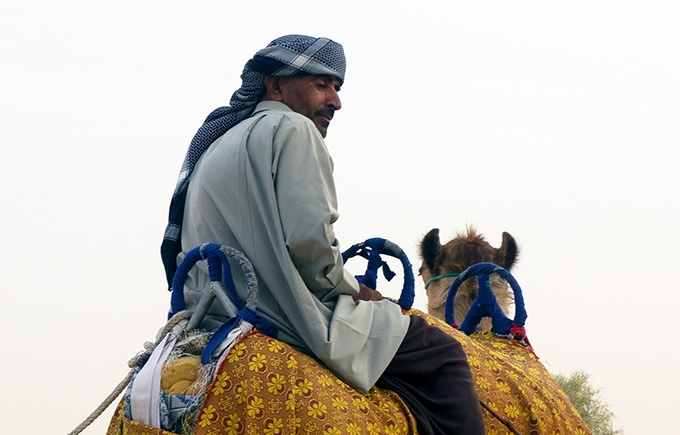 Camel rides in the Dubai Desert - Bab Al Shams Resort and Spa