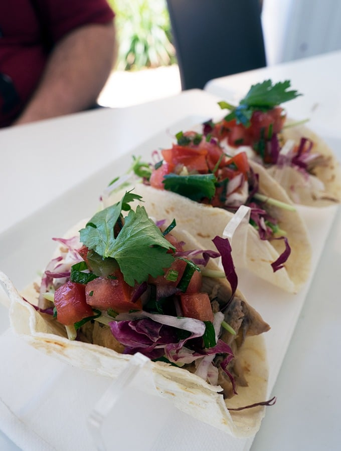 Zimzala Restaurant Cronulla Beach - dog friendly dining in Cronulla - Pulled Pork Tacos
