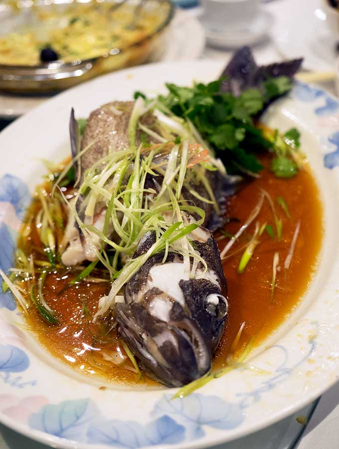 macanese cuisine steamed coral trout with soy sauce, green onion and corriander