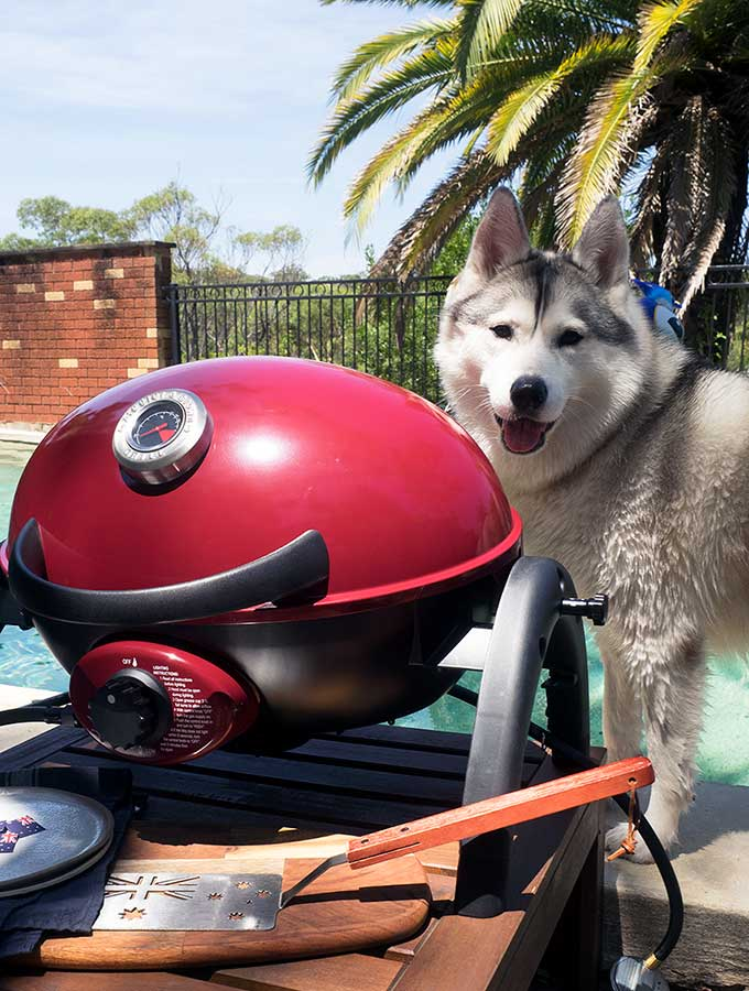harley with the ziegler & brown portable bbq