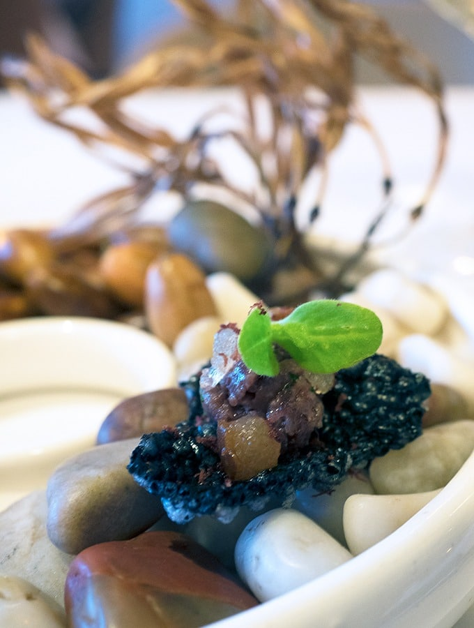 venison tartare served on acorns
