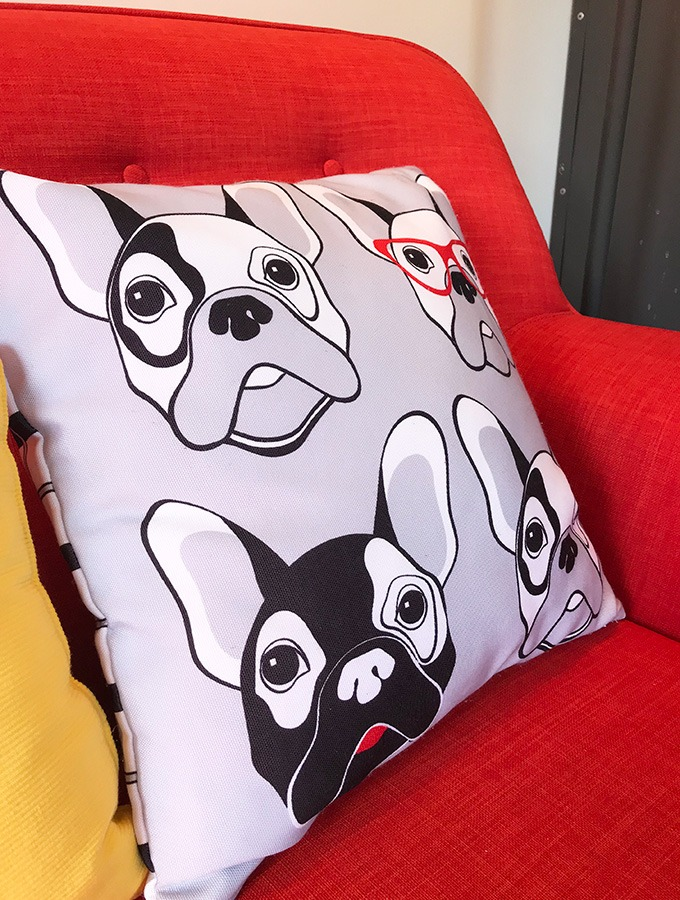 pillow with pugs on it on a red lounge at the dog house port macquarie