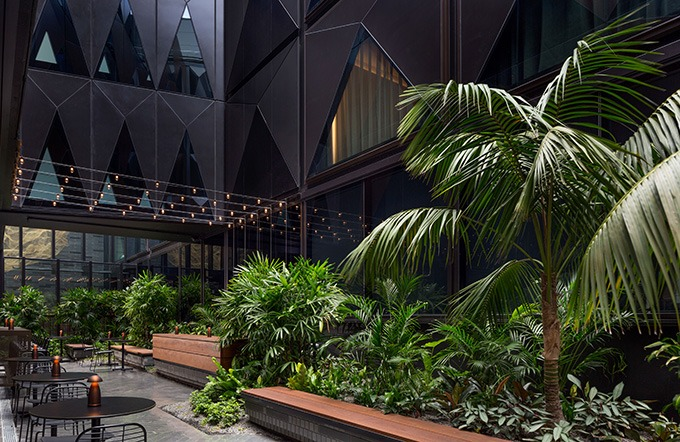 green plants in the atrium of the west hotel sydney