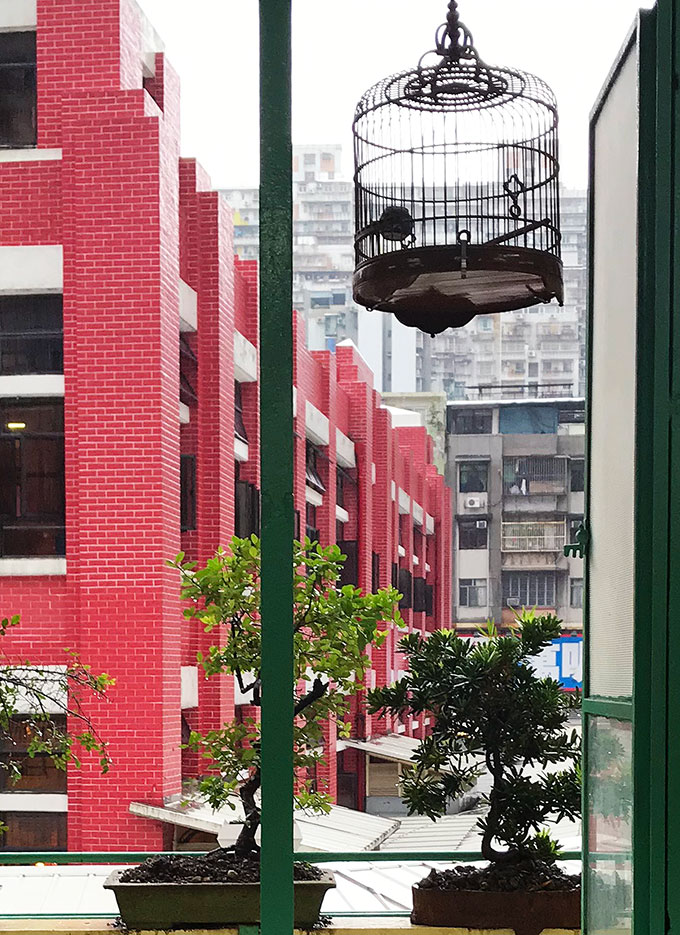 Long Va Tea House in Macao - view of Red Market