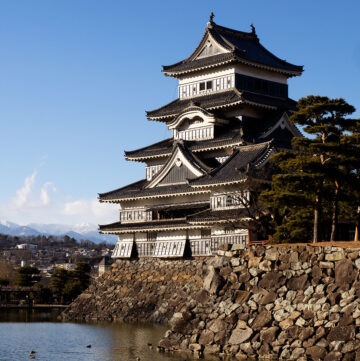 Matsumoto castle with moat and ducks