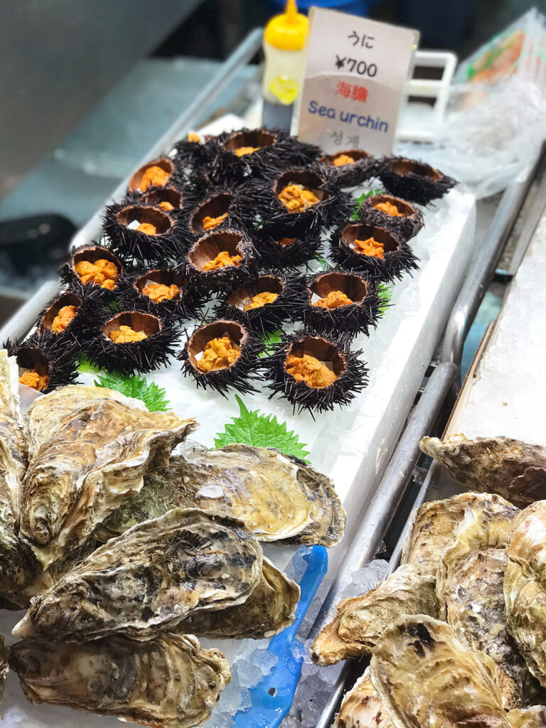 sea urchin ready to buy and eat and large oysters in the shell
