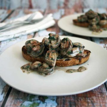 Creamy mushrooms on toast, served on a white plate wooden background