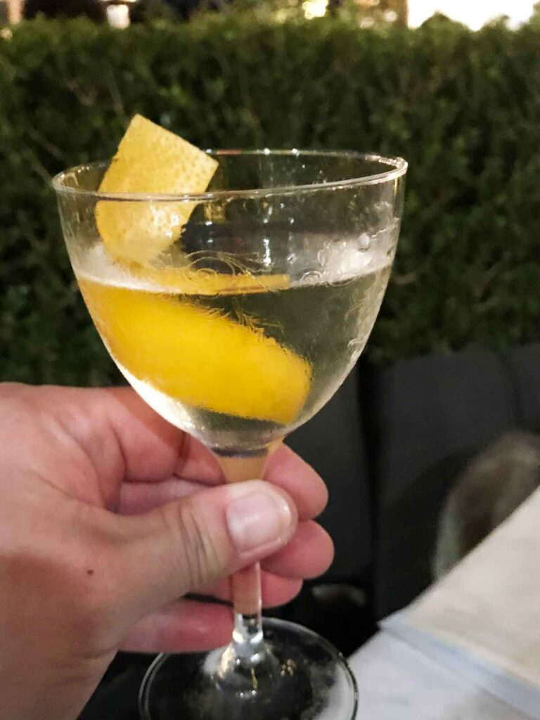holding a glass of martini with a twist of lemon